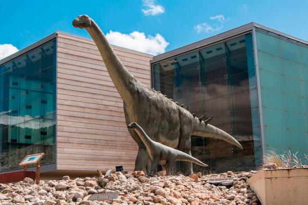 - Museo Paleontológico -